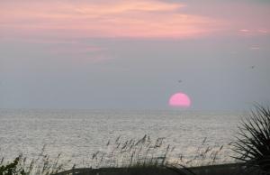 Another gorgeous Florida sunset!