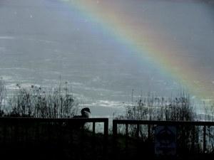 Perpetual rainbow