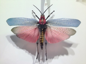 Unusual insects such as this lovely winged specimen fill the Insectarium