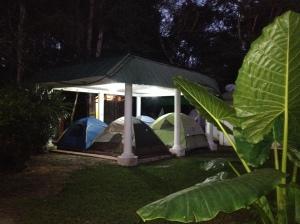 Jaguar's cozy camp area