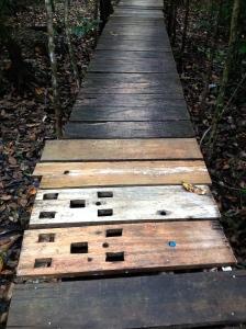 Rio D plank