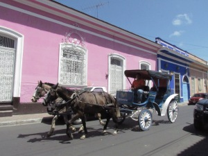 A horse-drawn carriage goes by cheerfully painted houses.